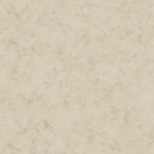 Greys Textures Wallcovering by York