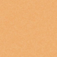 Light and Medium Orange Textures Wallcovering by York