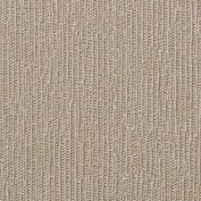 Coast Wallcovering by Innovations