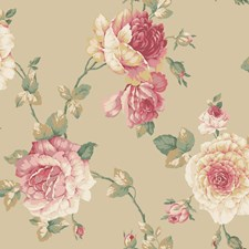 Tan/Light Peach to Dark Coral/White Floral Medium Wallcovering by York