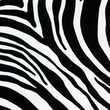 FAB10132 Zebra Adhesive Film by Brewster