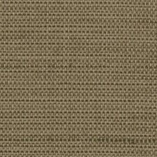 Olive Wallcovering by Innovations