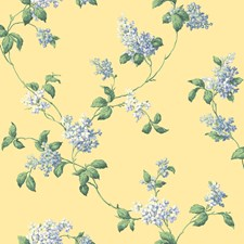 Yellow Background/Blue Sidewall Wallcovering by York