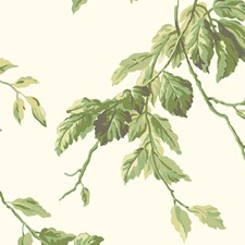 Beige Background/Green Botanical Wallcovering by York