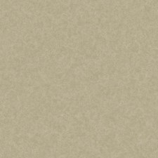 Taupe Texture Wallcovering by York
