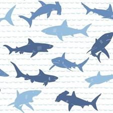 KI0566 Shark Charades by York