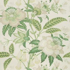 Greenery Botanical Wallcovering by Lee Jofa Wallpaper