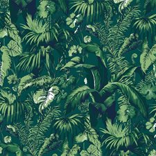 Green Tropical Wallcovering by Brunschwig & Fils