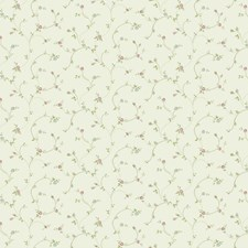 Off White/Light Pink/Light Blue Floral Wallcovering by York