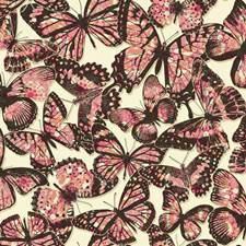 Off-white/Dark Brown/Pink Animals Wallcovering by York