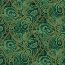 Light Green/Dark Green/Black Novelty Wallcovering by York