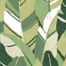 RMK11573RL Hearts Of Palm by York