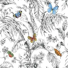 RMK11822WP Butterfly Sketch by York