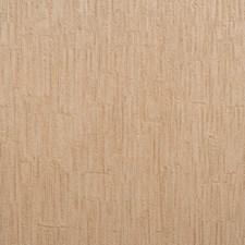 Coriander Brown/Dark Tan Stripes Wallcovering by York