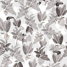 Birds Of Paradise Wallcovering by Innovations