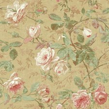 Gold/Peach/Coral Botanical Wallcovering by York