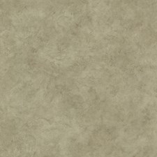 Moss Wallcovering by Brewster
