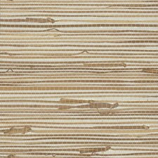 VG4441 Wide Knotted Grass by York