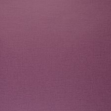 Berry Solid Wallcovering by Clarke & Clarke