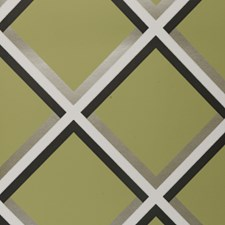Olive Abstract Wallcovering by Clarke & Clarke