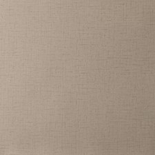 Taupe Solid Wallcovering by Clarke & Clarke
