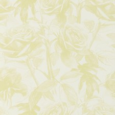 Citrus Wp Floral Medium Wallcovering by Clarke & Clarke