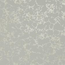 Ivory/Gold Wallcovering by Clarke & Clarke