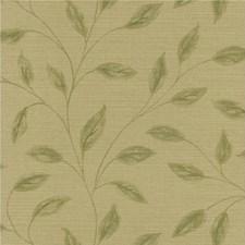 Brown/Green Wallcovering by Kravet Wallpaper