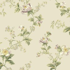 Foggy Gray/Dusty Lilac/Wisteria Floral Wallcovering by York