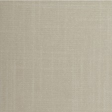 Egg Shell Solid Wallcovering by Winfield Thybony