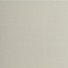 Crepe Solid Wallcovering by Winfield Thybony