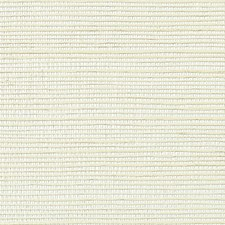 Wet Plaster Wallcovering by Scalamandre Wallpaper