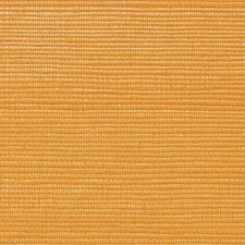 Saffron Wallcovering by Scalamandre Wallpaper