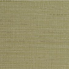 Olive Texture Wallcovering by Winfield Thybony