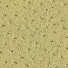 Avocado Wallcovering by Scalamandre Wallpaper