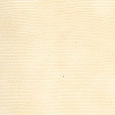 Buttermilk Wallcovering by Scalamandre Wallpaper