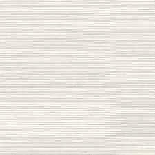 Buttermilk Solid Wallcovering by Winfield Thybony