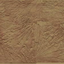 Red/Gold Bohemian Wallcovering by York